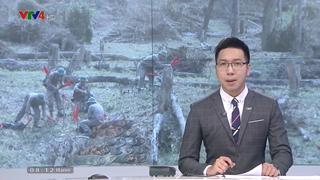 Korea-Viet Nam Mine Action Project