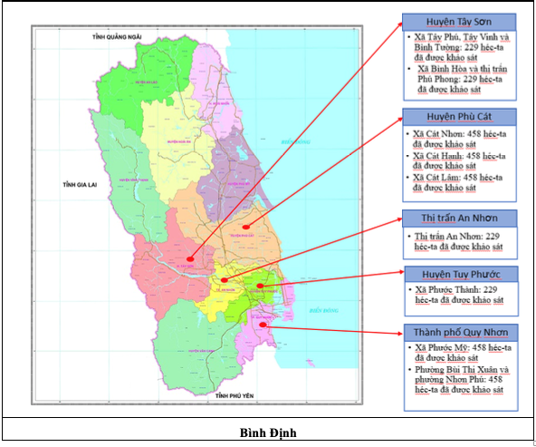 Survey and determining at Binh Dinh province