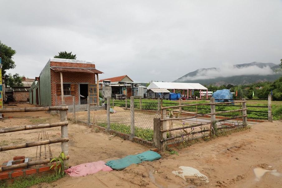 Dự án KVMAP mang lại diện tích đất sạch rất lớn cho tỉnh Bình Định